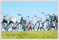 自転車運転に関する活動